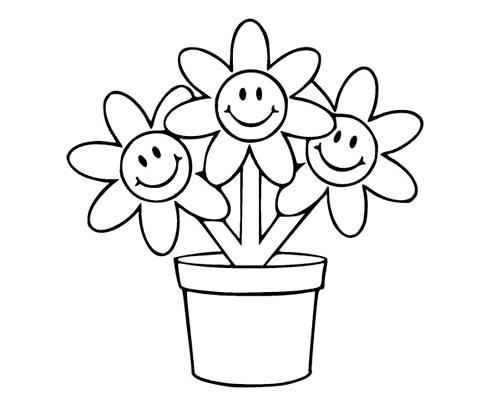 花盆里的小花简笔画图画 植物-第1张
