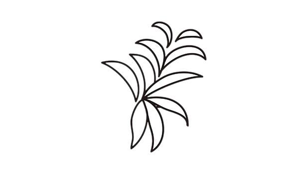 简单好学的吊兰盆栽简笔画 中级简笔画教程-第2张