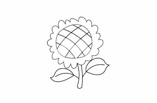 向日葵简笔画简单画法步骤教程及图片大全 植物-第6张