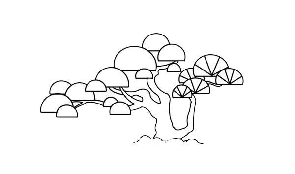 彩色松树儿童简笔画画法 中级简笔画教程-第6张