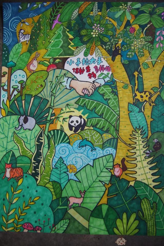 生物多样性儿童画