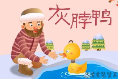 童话故事大全《灰脖鸭》 国外童话故事-第1张