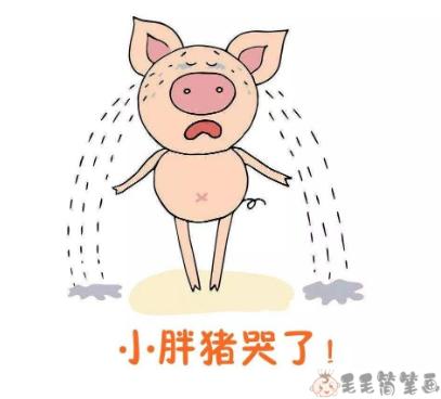 儿童睡前故事《小胖猪哭了》 儿童故事-第1张