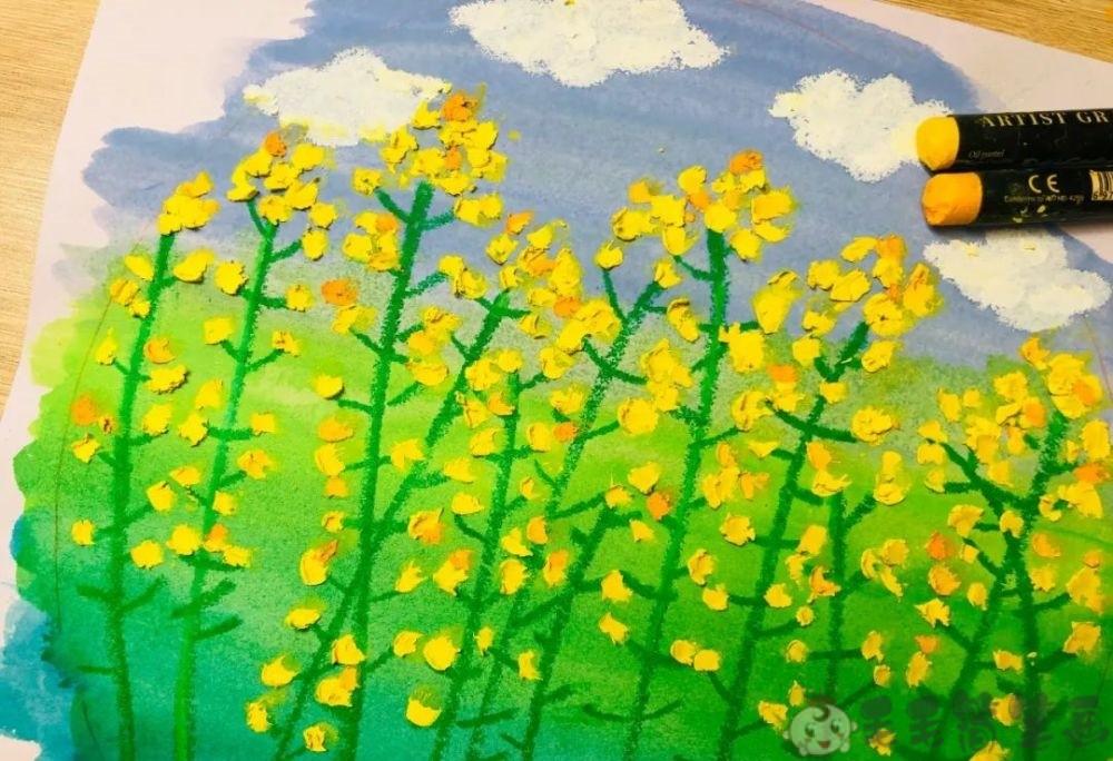 油菜花儿童画图片